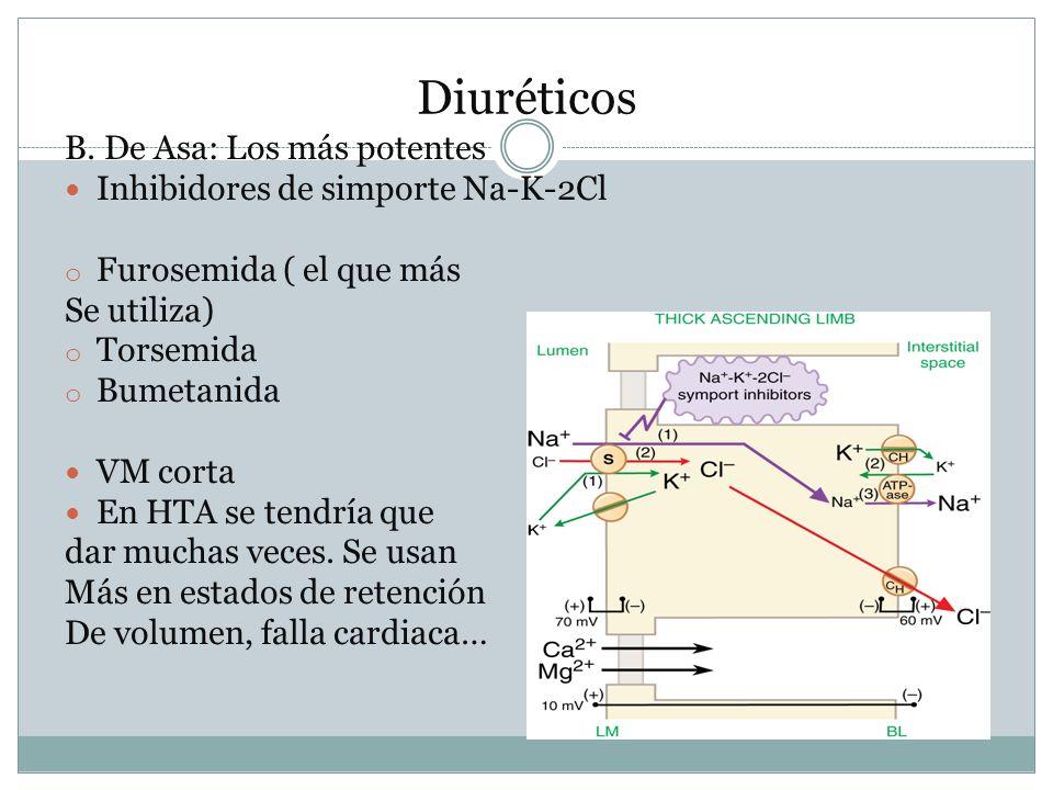 Diuréticos B. De Asa: Los más potentes Inhibidores de simporte Na-K-2Cl o Furosemida ( el que más Se utiliza) o Torsemida o Bumetanida VM corta En HTA