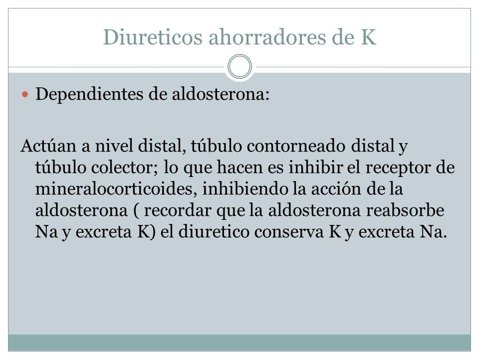 Diureticos ahorradores de K Dependientes de aldosterona: Actúan a nivel distal, túbulo contorneado distal y túbulo colector; lo que hacen es inhibir e