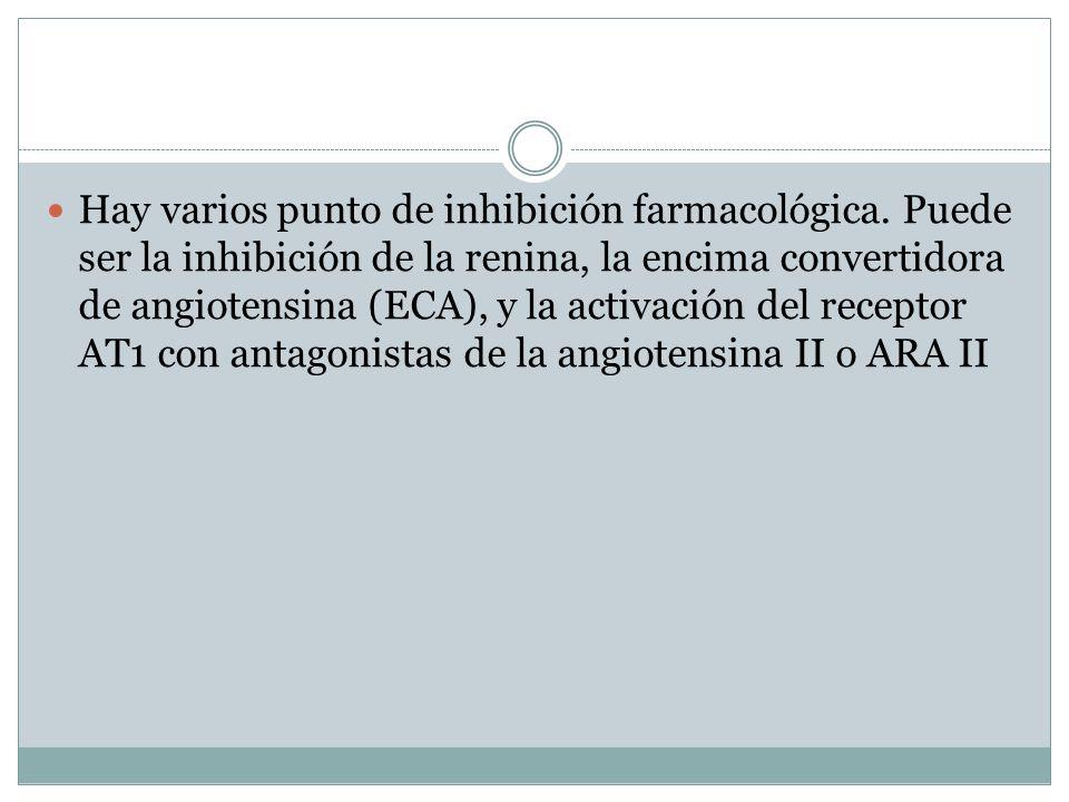 Hay varios punto de inhibición farmacológica. Puede ser la inhibición de la renina, la encima convertidora de angiotensina (ECA), y la activación del