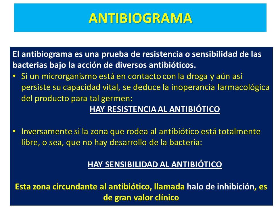ANTIBIOGRAMA El antibiograma es una prueba de resistencia o sensibilidad de las bacterias bajo la acción de diversos antibióticos. Si un microrganismo