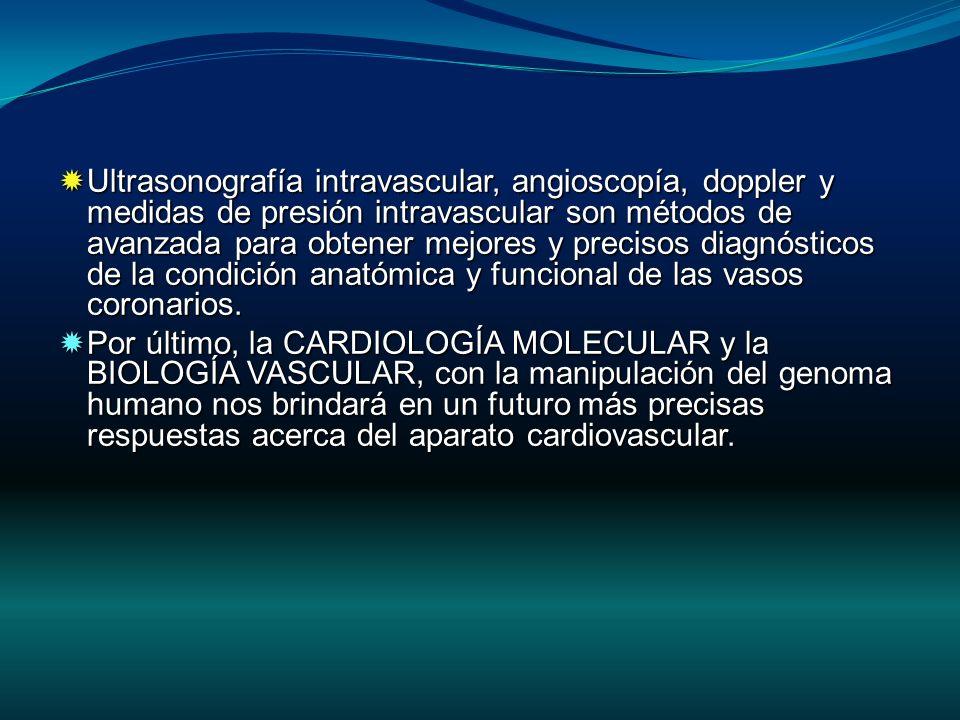 Ultrasonografía intravascular, angioscopía, doppler y medidas de presión intravascular son métodos de avanzada para obtener mejores y precisos diagnós