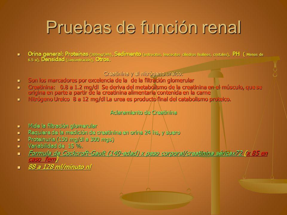 Pruebas de función renal Orina general: Proteínas ( 300mg/24h ), Sedimento (eritrocitos, leucocitos cilindros hialinos, cristales), PH ( Menos de 6.5
