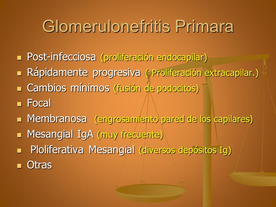 Glomerulonefritis Primara Post-infecciosa (proliferación endocapilar) Post-infecciosa (proliferación endocapilar) Rápidamente progresiva ( Proliferaci