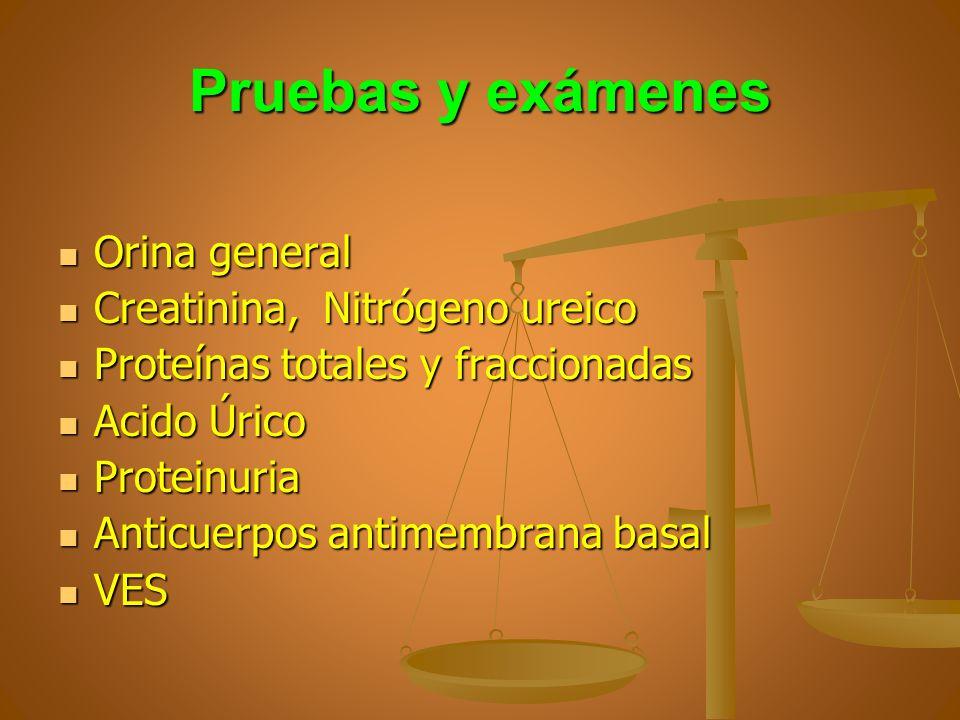 Pruebas y exámenes Orina general Orina general Creatinina, Nitrógeno ureico Creatinina, Nitrógeno ureico Proteínas totales y fraccionadas Proteínas to