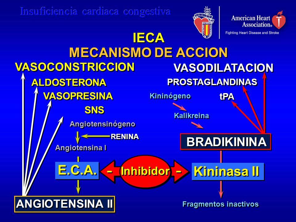VASOCONSTRICCION VASODILATACION Kininógeno Kalikreina Fragmentos inactivos Angiotensinógeno Angiotensina I RENINA Kininasa II Inhibidor ALDOSTERONA SN