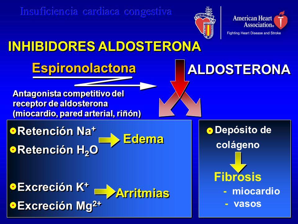 ALDOSTERONA Retención Na + Retención H 2 O Excreción K + Excreción Mg 2+ Retención Na + Retención H 2 O Excreción K + Excreción Mg 2+ Depósito de colá