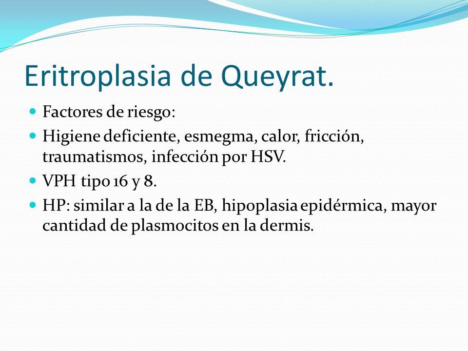 Eritroplasia de Queyrat. Factores de riesgo: Higiene deficiente, esmegma, calor, fricción, traumatismos, infección por HSV. VPH tipo 16 y 8. HP: simil