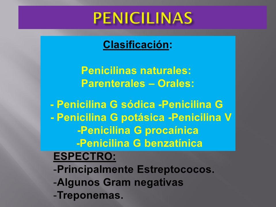 Clasificación: Penicilinas naturales: Parenterales – Orales: - Penicilina G sódica -Penicilina G - Penicilina G potásica -Penicilina V -Penicilina G p