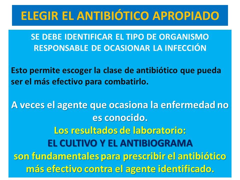 ELEGIR EL ANTIBIÓTICO APROPIADO SE DEBE IDENTIFICAR EL TIPO DE ORGANISMO RESPONSABLE DE OCASIONAR LA INFECCIÓN Esto permite escoger la clase de antibi