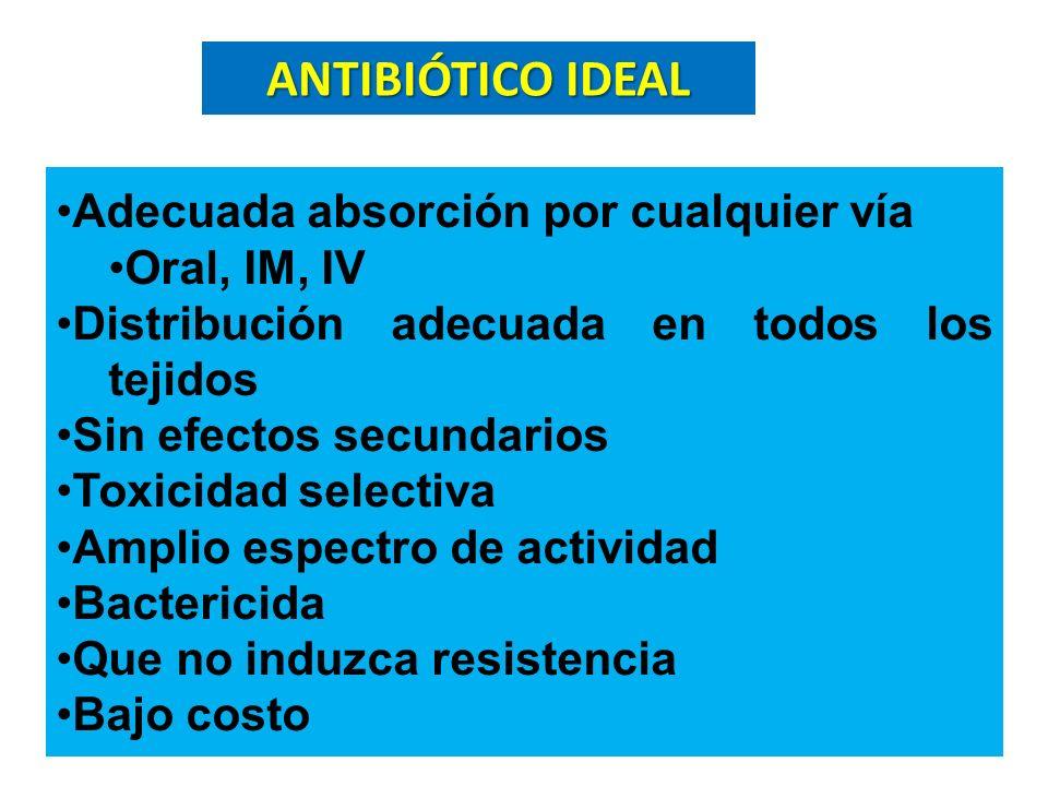 Adecuada absorción por cualquier vía Oral, IM, IV Distribución adecuada en todos los tejidos Sin efectos secundarios Toxicidad selectiva Amplio espect