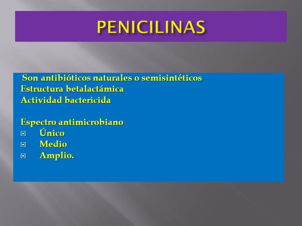 Mecanismo de acción: Penetran la bacteria a través de las porinas para unirse a las PBP s (penicillin binding proteins), enzimas comprometidas en la etapa terminal del ensamblado de la pared celular y en el remodelamiento de ésta durante el crecimiento y división.