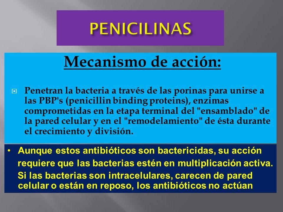 Mecanismo de acción: Penetran la bacteria a través de las porinas para unirse a las PBP's (penicillin binding proteins), enzimas comprometidas en la e