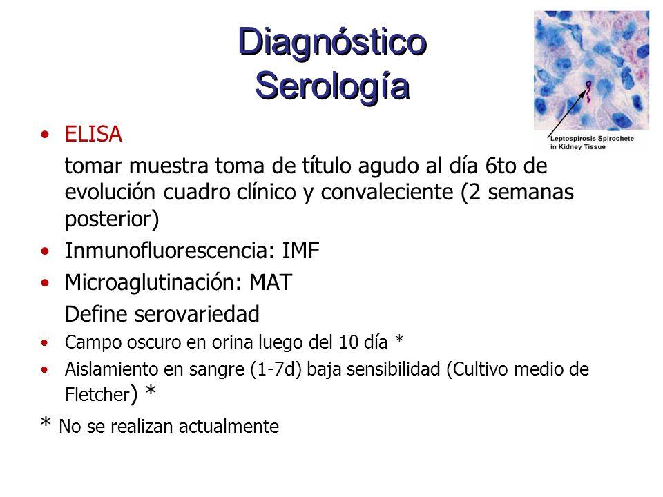 Diagnóstico Serología ELISA tomar muestra toma de título agudo al día 6to de evolución cuadro clínico y convaleciente (2 semanas posterior) Inmunofluo