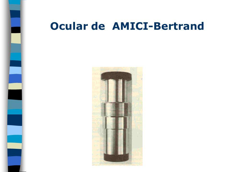 Mecanismo de Función del Microscopio de Contraste de Fases. La luz proveniente de la muestra es descompuesta por el condensador en 2 partes: los rayos