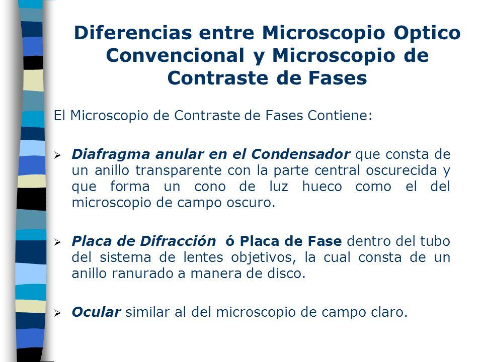 Diferencias entre Microscopio Optico Convencional y Microscopio de Contraste de Fases El Microscopio de Contraste de Fases Contiene: Diafragma anular en el Condensador que consta de un anillo transparente con la parte central oscurecida y que forma un cono de luz hueco como el del microscopio de campo oscuro.