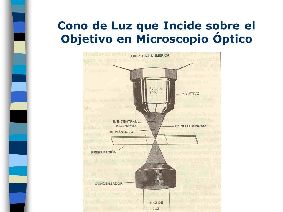Funciones del Objetivo Contiene en su interior, una Placa de Fase ó Placa de Difracción que es un anillo ranurado a manera de disco dentro del tubo de