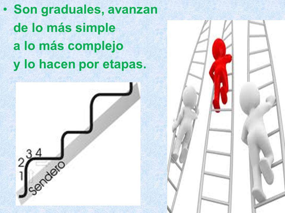 Son graduales, avanzan de lo más simple a lo más complejo y lo hacen por etapas.