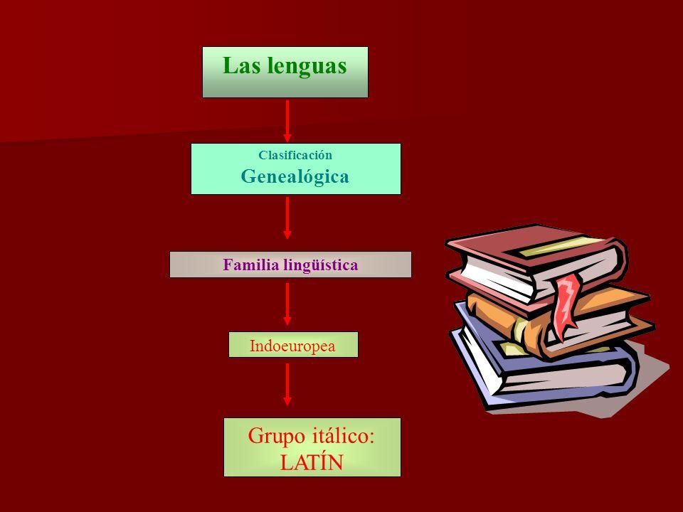 El latín, lengua indoeuropea El latín literario, fijado ya por las primeras gramáticas, se convierte en una de las grandes lenguas literarias de la Antigüedad.
