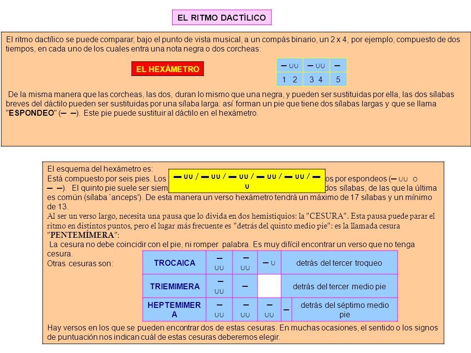 El ritmo dactílico se puede comparar, bajo el punto de vista musical, a un compás binario, un 2 x 4, por ejemplo, compuesto de dos tiempos, en cada un