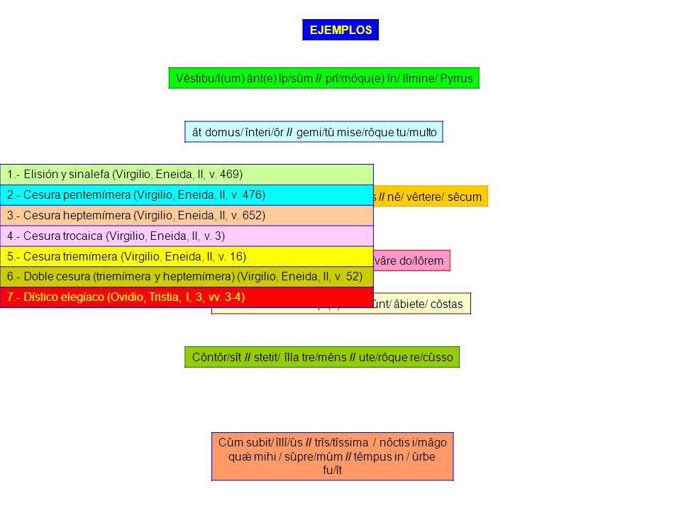 1.- Expresar el término español correspondiente a los términos latinos propuestos, explicando la evolución fonética sufrida.