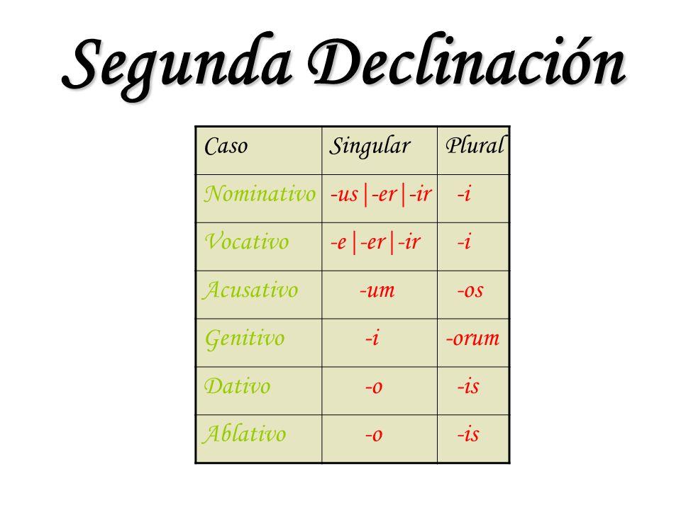 Segunda Declinación CasoSingularPlural Nominativo-us|-er|-ir -i Vocativo-e|-er|-ir -i Acusativo -um -os Genitivo -i-orum Dativo -o -is Ablativo -o -is