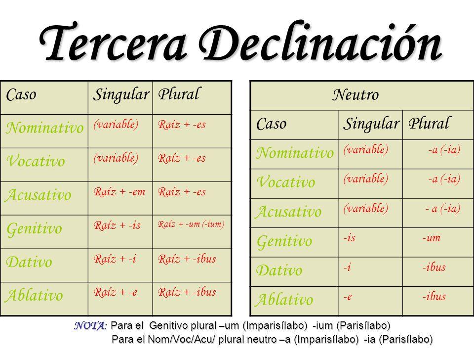 Tercera Declinación CasoSingularPlural Nominativo (variable)Raíz + -es Vocativo (variable)Raíz + -es Acusativo Raíz + -emRaíz + -es Genitivo Raíz + -i