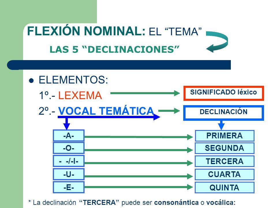 ANÁLISIS MORFOLÓGICO DEL SUSTANTIVO ELEMENTOS POSIBLES (partes) [LEXEMA – VOC.TEMÁTICA – DESINENCIA] TEMATERMINACIÓN UN EJEMPLO: [ L I B R O S ] [LEXE