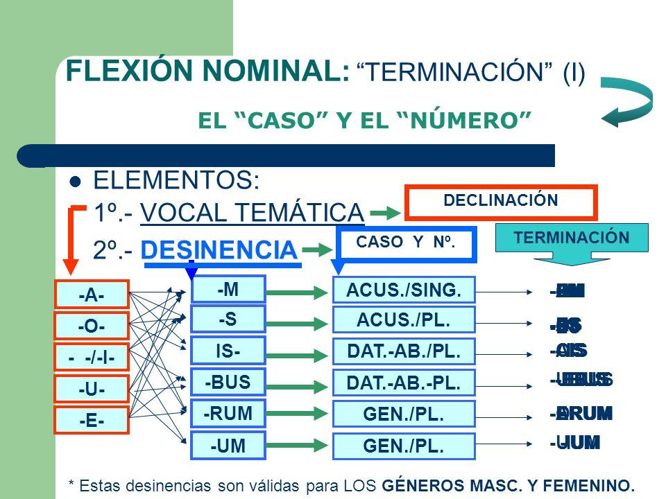 FLEXIÓN NOMINAL: EL TEMA ELEMENTOS: 1º.- LEXEMA 2º.- VOCAL TEMÁTICA SIGNIFICADO léxico DECLINACIÓN -A- -O- - -/-I- -U- -E--E- PRIMERA SEGUNDA TERCERA