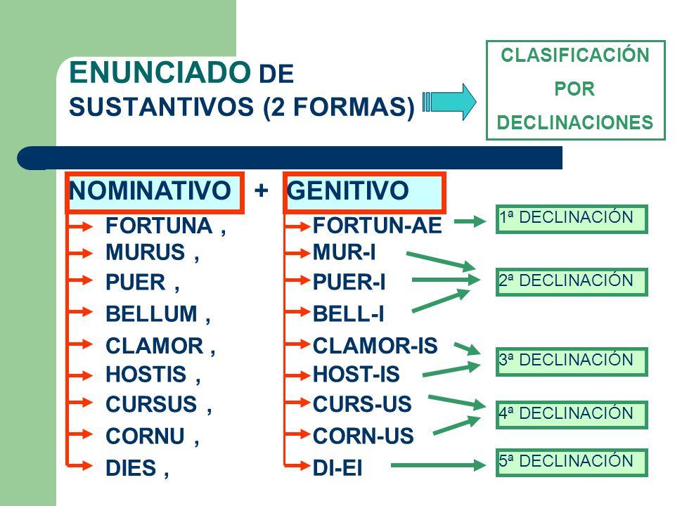 FLEXIÓN NOMINAL LA TERMINACIÓN (II) DEFINICIÓN: Se denomina terminación de un sustantivo a todos los elementos añadidos a su LEXEMA (o raíz). DECLINAR
