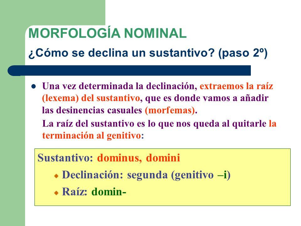 MORFOLOGÍA NOMINAL ¿Cómo se declina un sustantivo? (paso 1º) Lo primero que hemos de hacer para declinar un sustantivo es determinar a qué declinación