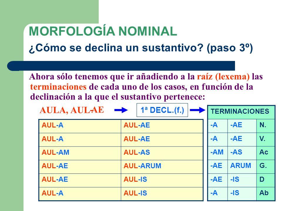Una vez determinada la declinación, extraemos la raíz (lexema) del sustantivo, que es donde vamos a añadir las desinencias casuales (morfemas). MORFOL