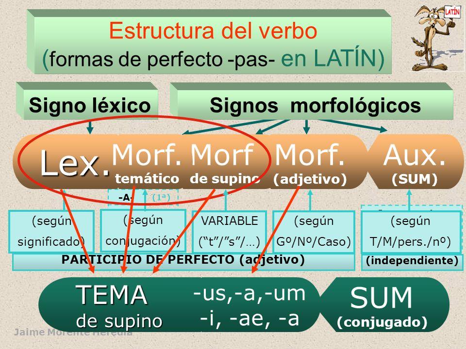 Jaime Morente Heredia Estructura del verbo ( formas de perfecto -pas- en LATÍN) Signos morfológicosSigno léxico -A- (1ª) -E- (2ª) -Ø- (3ª) -I- (4ª) Sum,es,est,… Eram,eras,erat, (ETC.) PARTICIPIO DE PERFECTO (adjetivo) Lex.