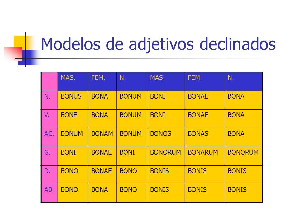 Modelos de adjetivos declinados MAS.FEM.N.MAS.FEM.N. BONUSBONABONUMBONIBONAEBONA V.BONEBONABONUMBONIBONAEBONA AC.BONUMBONAMBONUMBONOSBONASBONA G.BONIB