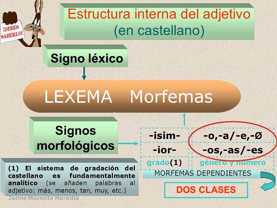 Jaime Morente y Alfonso Sancho EL ADJETIVO: estructura interna La estructura interna del adjetivo consiste, en general, en la combinación de un signo