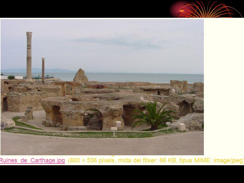 No hi ha una versió amb una resolució més gran. Ruines_de_Carthage.jpg (800 × 536 píxels, mida del fitxer: 66 KB, tipus MIME: image/jpeg) Ruines_de_Ca