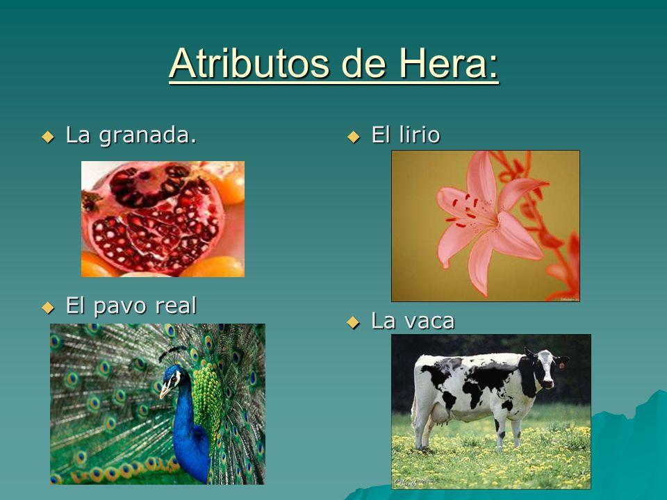 Atributos de Hera: La granada. La granada. El lirio El lirio El pavo real El pavo real La vaca La vaca