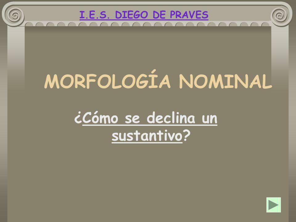MORFOLOGÍA NOMINAL ¿Cómo se declina un sustantivo? I.E.S. DIEGO DE PRAVES
