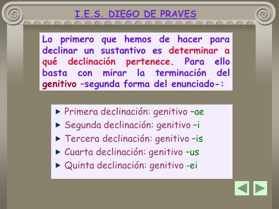 MORFOLOGÍA NOMINAL ¿Cómo se declina un sustantivo I.E.S. DIEGO DE PRAVES