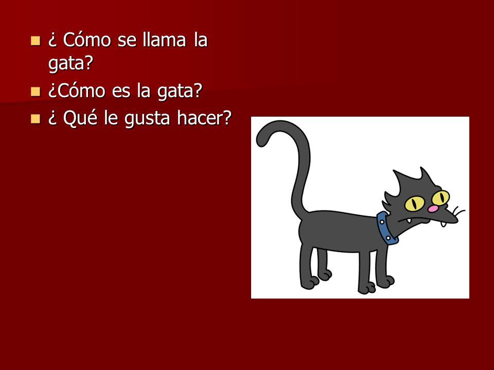 ¿ Cómo se llama la gata? ¿ Cómo se llama la gata? ¿Cómo es la gata? ¿Cómo es la gata? ¿ Qué le gusta hacer? ¿ Qué le gusta hacer?