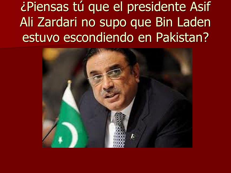 ¿Piensas tú que el presidente Asif Ali Zardari no supo que Bin Laden estuvo escondiendo en Pakistan?