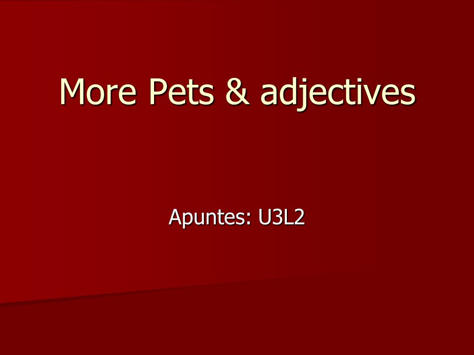 More Pets & adjectives Apuntes: U3L2