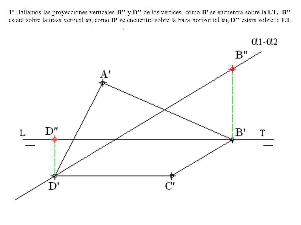 1º Hallamos las proyecciones verticales B y D de los vértices, como B se encuentra sobre la LT, B estará sobre la traza vertical α 2, como D se encuen