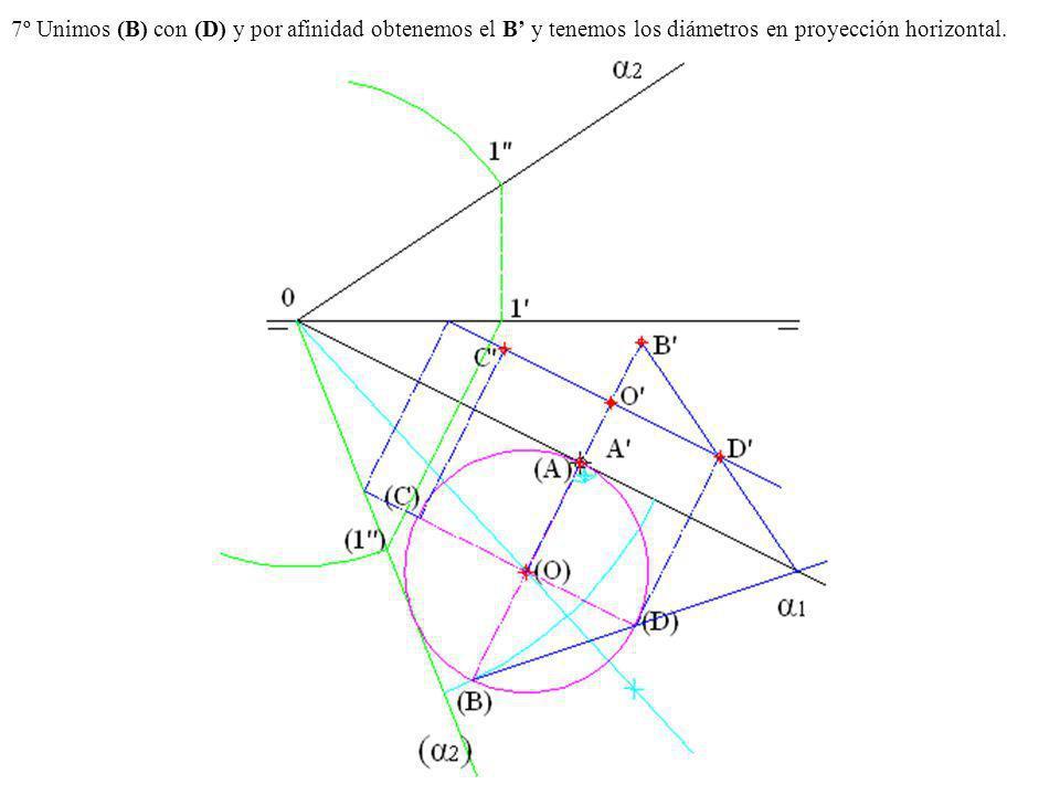 7º Unimos (B) con (D) y por afinidad obtenemos el B y tenemos los diámetros en proyección horizontal.