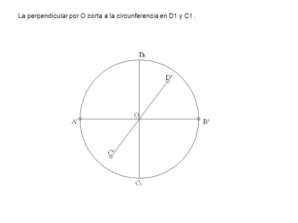 La perpendicular por O corta a la circunferencia en D1 y C1.