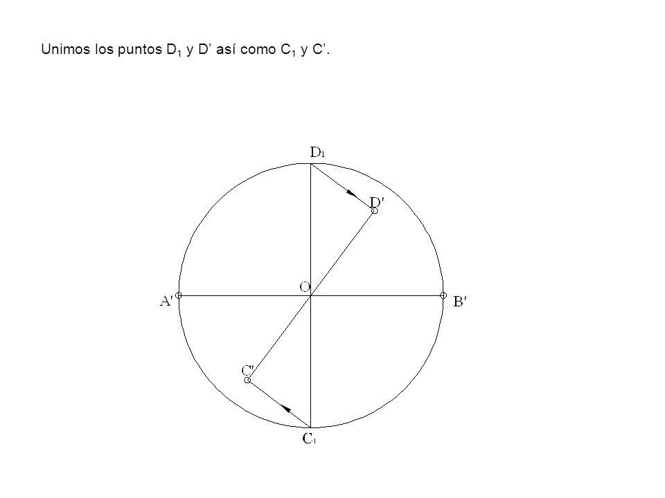 Unimos los puntos D 1 y D así como C 1 y C.