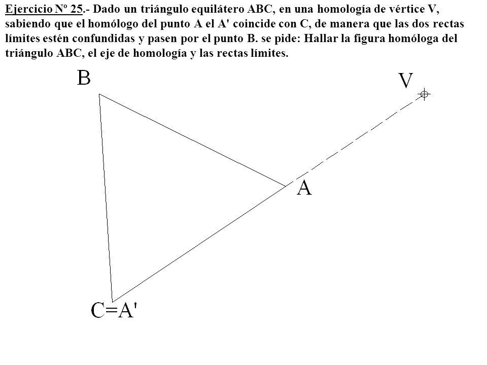 Ejercicio Nº 25.- Dado un triángulo equilátero ABC, en una homología de vértice V, sabiendo que el homólogo del punto A el A' coincide con C, de maner