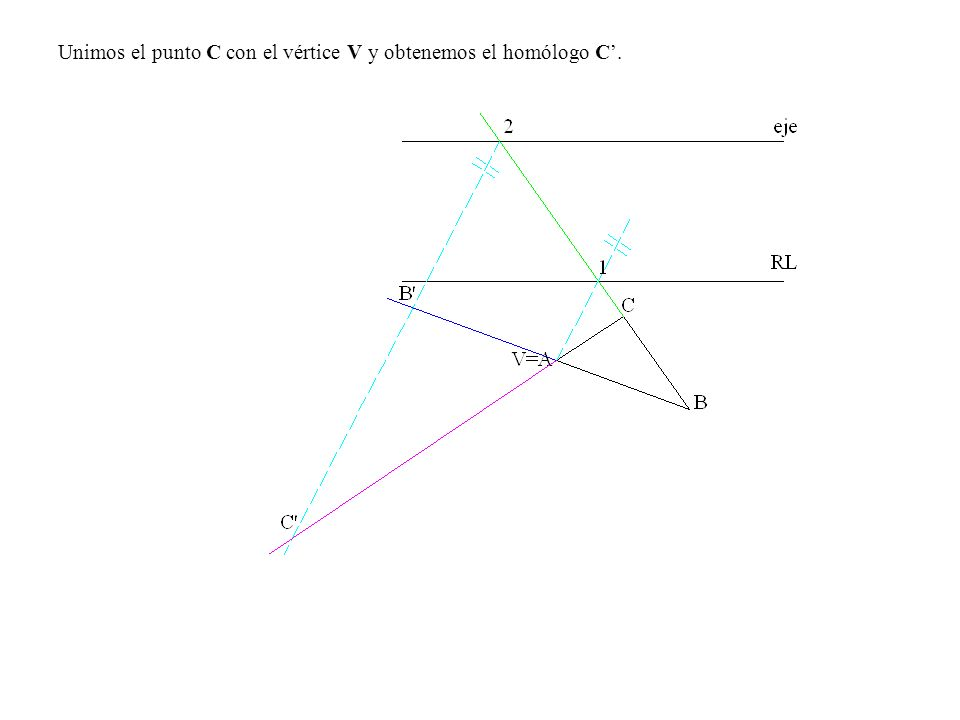 Unimos el punto C con el vértice V y obtenemos el homólogo C.