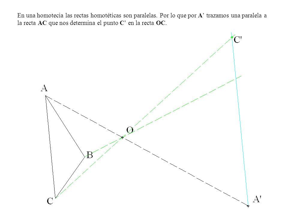 En una homotecia las rectas homotéticas son paralelas. Por lo que por A trazamos una paralela a la recta AC que nos determina el punto C en la recta O
