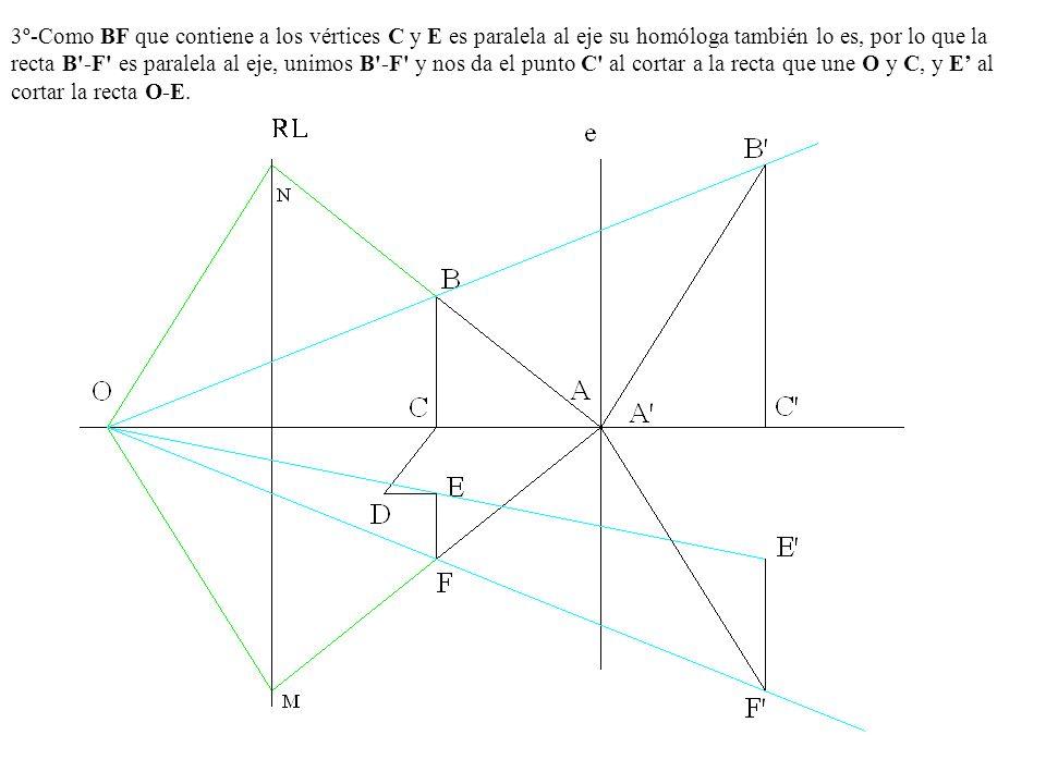 3º-Como BF que contiene a los vértices C y E es paralela al eje su homóloga también lo es, por lo que la recta B'-F' es paralela al eje, unimos B'-F'