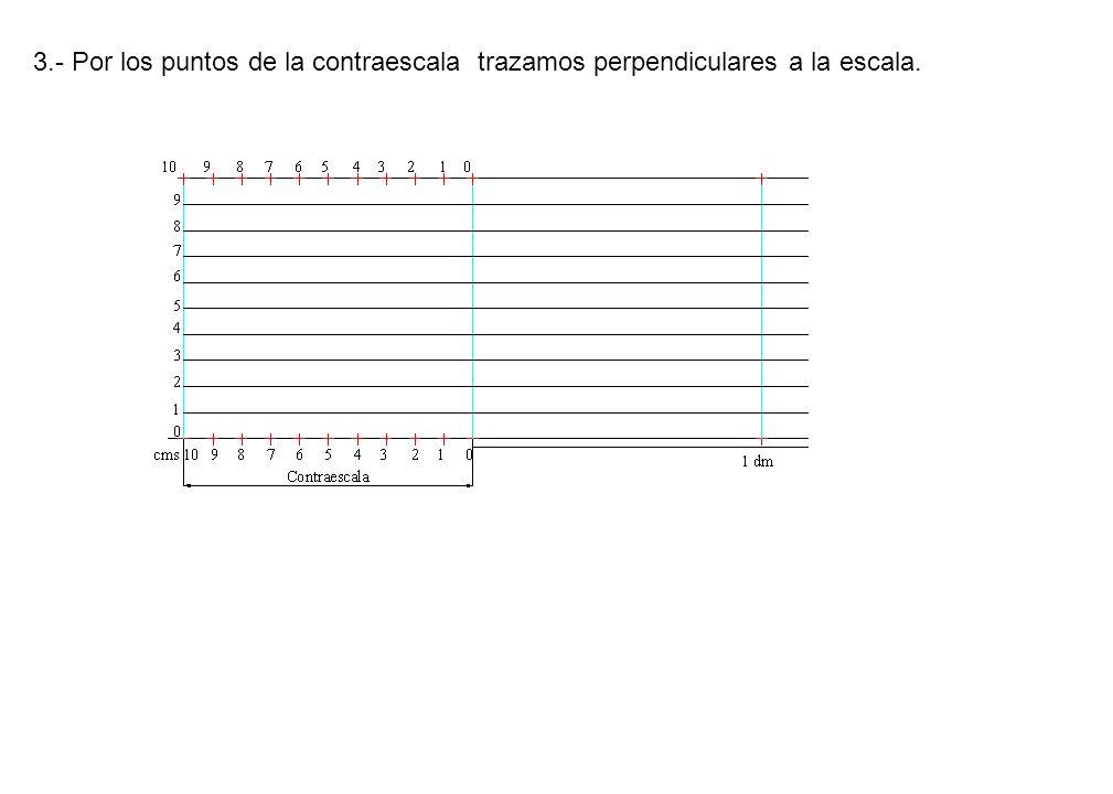 3.- Por los puntos de la contraescala trazamos perpendiculares a la escala.